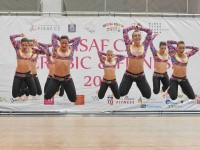 O víkendu 24. a 25. října proběhlo v Mladé Boleslavi  mistrovství ČR ve sportovním aerobiku. Foto: Jaroslav Appeltauer