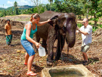 Chovatelé slonů ze Zoo Praha se jeli do Srí Lanky seznámit se svými novými přírůstky. Foto: Miroslav Bobek, Zoo Praha