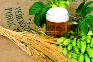 Do Žatce za pivem, Malý dobrodruh