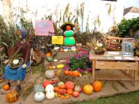 """Navštivte s rodinou a dětmi tradiční bouřlivou """"Dýňovou slavnost"""" ve vesničce Hanfthal jen kousek od lázeňského městěčka Laa. Foto: www.landumlaa.at"""
