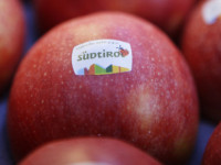 Jablka vás osvěží a dodají vám energii. Foto: www.suedtiroler-originale.info