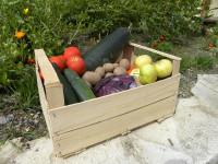 S komunitními bedýnkami si můžete být jisti, že zelenina, kterou kupujete je kvalitní. Foto: www.bio-bedynky.cz