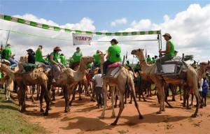 Maralal Camel Derby, velbloudí safari