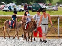 Poznejte svět domácích zvířat při své dovolené s dětmi. Foto: www.farmablanik.cz