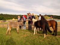 Na Farmě-Blaník se vaše děti seznámí se zvířaty, které tu jsou ve volném výběhu. Foto: www.farmablanik.cz