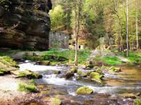 Magické ticho uprostřed pískovcových skal, lesů a kaňonů, to je České Švýcasko - ráj pro rodiny s dětmi.