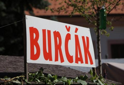 Sezóna oblíbeného burčáku je tady! Foto: www. wineofczechrepublic.cz