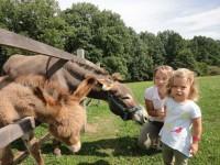 Prožijte den na opravdové farmě. Foto: www.farmablanik.cz