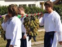 Vinobraní si užije opravdu celá rodina. Foto: www.vinazcech.cz