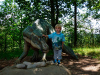 Dinosauři jsou fenomén. Foto: www.aladine.cz