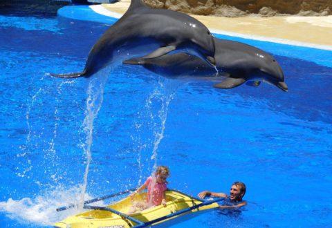 V aquaparku Istralandia si zábavu užije celá rodina. Foto: www.ubytovanivchorvatsku.cz