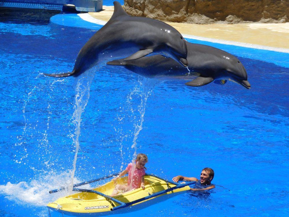 Aquapark Chorvatsko