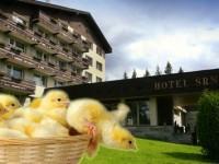 Nádherná šumavská příroda a příjemné wellness centrum, to je hotel Srní.