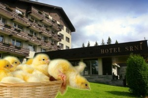 hotel Srní, Malý dobrodruh