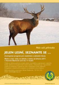 jelen, pozorování, Horní Maršov, Krkonoše, Malý dobrodruh