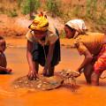 Divoký Madagaskar, Malý dobrodruh