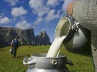 Festival, na kterém poteče mléko. Foto: www.suedtirol.info