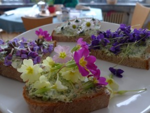 Květiny k jídlu, Malý dobrodruh