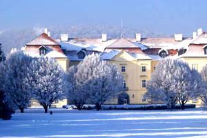 Vizovice, zámek, zima, zabijačka, Moravský kulinářský institut, malý dobrodruh